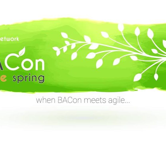 IT Network BACon agile spring